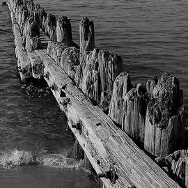 Old Wood Pier by Lisa Lindgren