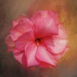Oleander Beauty by Terry Davis