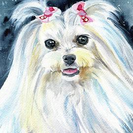 Olivia Maltese Dog Painting by Dora Hathazi Mendes