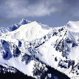 Olympic Mountains In Snow by Douglas Taylor