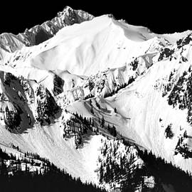 Olympic Mountains In Spring - Monochrome Vista by Douglas Taylor