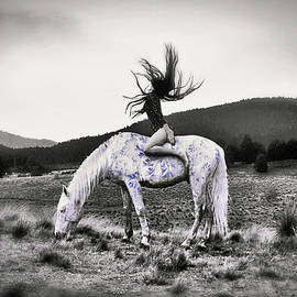 On a Pale Horse by Susan Maxwell Schmidt
