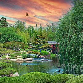 On Golden Pond Sunset by David Zanzinger