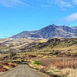 On The Way To Squaw Butte by Robert Bales