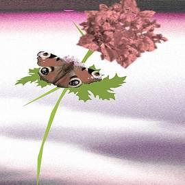 One Stem Flower by Belinda Threeths