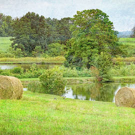 One View Of Farm Life by Robert Tubesing
