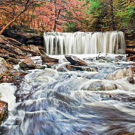 Oneida Falls Ricketts Glen by Marcia Colelli