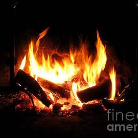 Open Fire Place by Birgit Moldenhauer