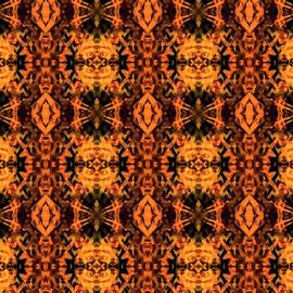 Orange and Yellow Kaleidoscope by Francis Sullivan