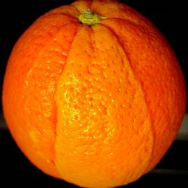 Orange Chimera by Michael Klahr