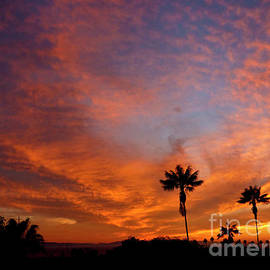 Orange Cotton Puff Sunset by Julieanne Case