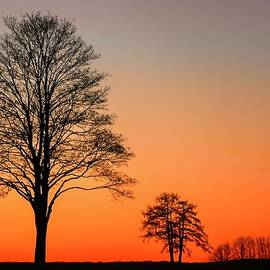 Orange Sky and Silhouettes by KaFra Art