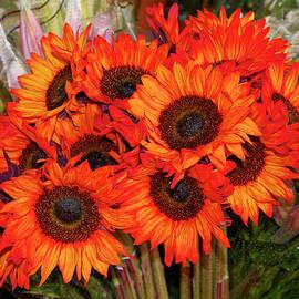Orange Sunflowers by Sally Weigand