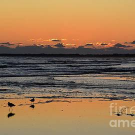 Orange Sunset on Money Bayou Beach by Catherine Sherman