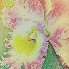 Orchid Art by Deborah Benoit