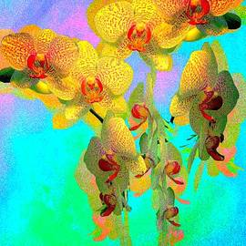 Orchid Pop by Christina Ford