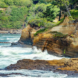 Oregon Coast by Bill Gallagher