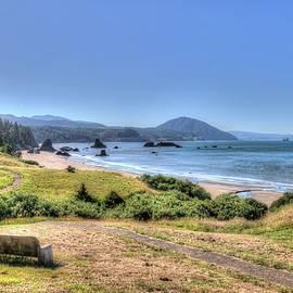 Oregon Coastline by Randy Dyer