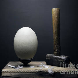 Ostrich egg and hammer by Etienne Outram