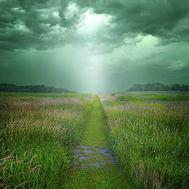 Our Greatest Stories Have Yet Been Told by Phil Koch