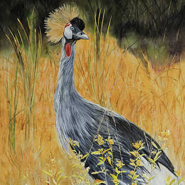 Out of Africa - Grey Crowned Crane by Vicky Lilla