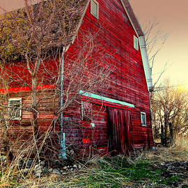 Out of Service Red Barn by Curtis Tilleraas