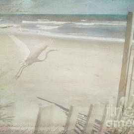 Out to Sea by Kelley Freel-Ebner
