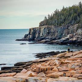 Outstanding Otter Cliffs by Elizabeth Dow