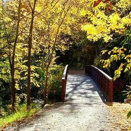 Over the Bridge and Through the Woods... by Ann Brown