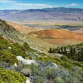Owens Valley by Gary McJimsey