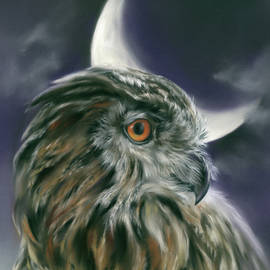 Owl and Crescent Moon by MM Anderson