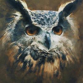 Owl by Andrzej Szczerski