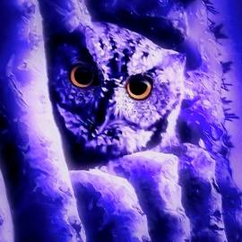 Owl in the Garden of the Ultraviolet by Judy Kennedy