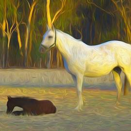 Painted Crystal And Foal by Joan Stratton