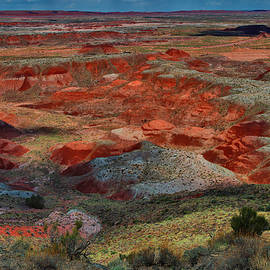 Painted Desert Colors by Stephen Vecchiotti