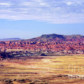 Painted Desert View by Douglas Taylor