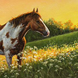 Painted Sunset by Kim Lockman