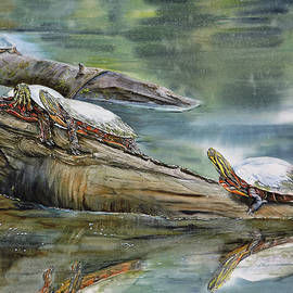 Painted Turtles on Long Lake by Vicky Lilla