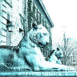 Pair Of Tigers by Anna Serebryanik