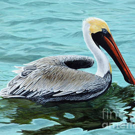 Palacios Bay Pelican by Jimmie Bartlett