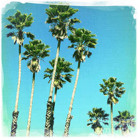 Palm Trees by Nina Prommer