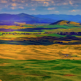 Palouse Country by David Patterson
