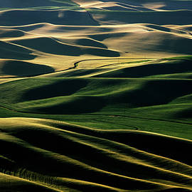 Palouse in June by David Lunde