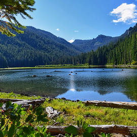 Pamelia Lake by Dana Hardy