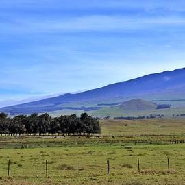 Paniolo Country Waimea Hawaii by Heidi Fickinger