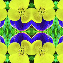 Pansies All In A Row by Sherrie Hall