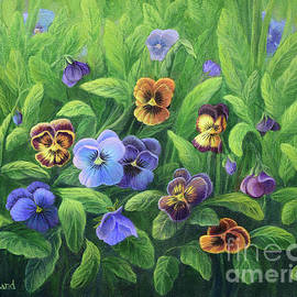 Pansies for Barbara by Sarah Irland