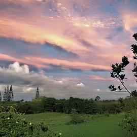 Papaikou Streaming Sunset by Heidi Fickinger