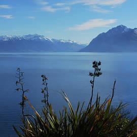 Paradise New Zealand, View from my Balcony on Lake Havea  by Imi Koetz