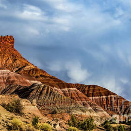 Paria Canyon Utah by Mitch Shindelbower